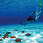 Cozumel Snorkeling