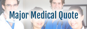mexican health insurance