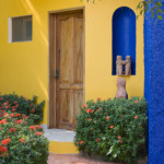 How To File A Mexico Homeowners Insurance Claim with Mexico on my Mind
